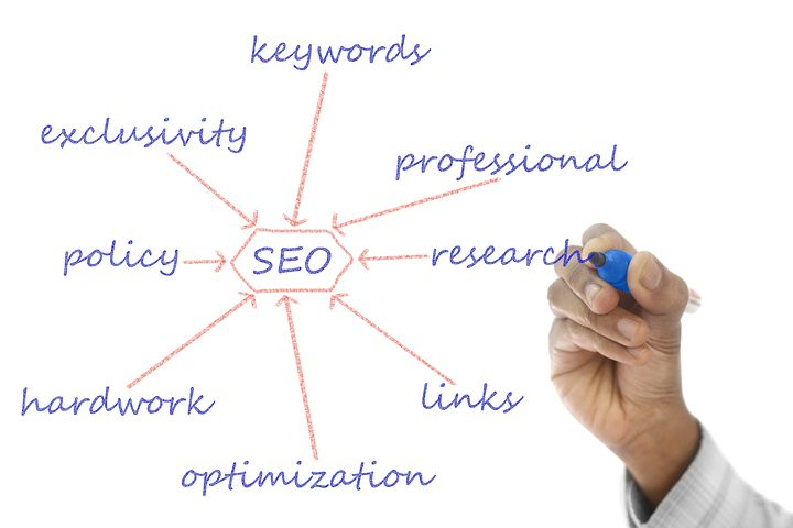 SEO and its branches
